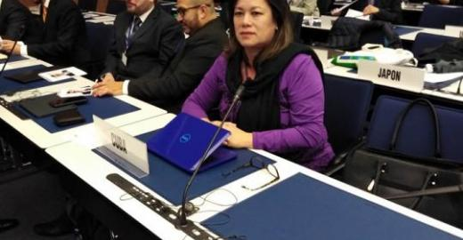Cuba participa en el Consejo de Administración de la Unión Postal Universal (UPU)