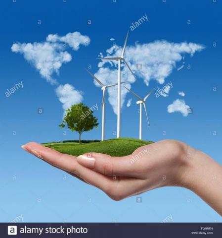Amazon y Google invierten en energía renovable